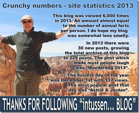 Site statistics 2013
